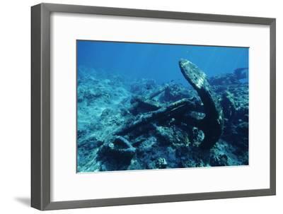 Anchor-Alexis Rosenfeld-Framed Photographic Print