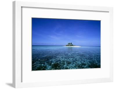 Coral Island-Alexis Rosenfeld-Framed Photographic Print