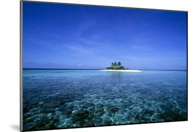 Coral Island-Alexis Rosenfeld-Mounted Photographic Print