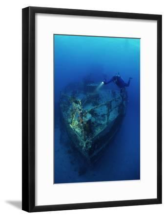 Diver on a Wreck-Alexis Rosenfeld-Framed Photographic Print