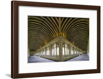 Winchester College Cloister Arcades-Paul Rapson-Framed Photographic Print