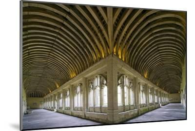 Winchester College Cloister Arcades-Paul Rapson-Mounted Photographic Print