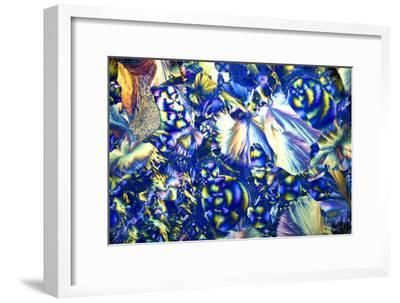 Copper Sulphate And Magnesium Sulphate-Dr. Keith Wheeler-Framed Photographic Print