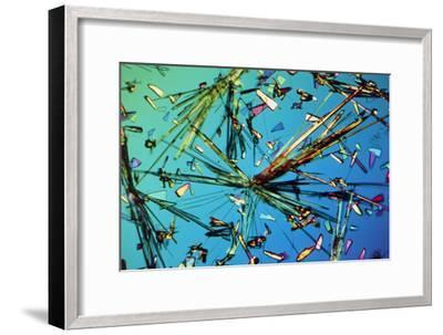 Ampicillin Antibiotic Drug Crystals-John Walsh-Framed Photographic Print
