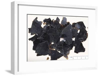 Biotite Mineral Samples-Dirk Wiersma-Framed Photographic Print