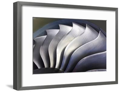 S-curve Fan Blades-Mark Williamson-Framed Photographic Print