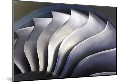 S-curve Fan Blades-Mark Williamson-Mounted Photographic Print