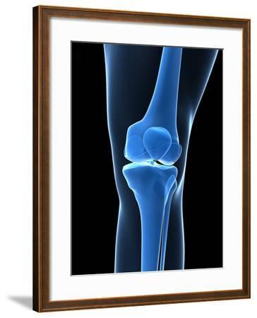 Knee Bones, Artwork-SCIEPRO-Framed Photographic Print