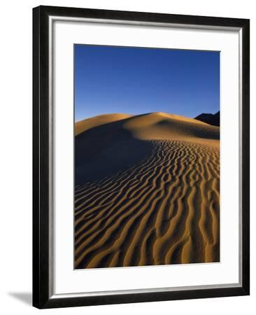 Sand Dunes in Death Valley-Bill Ross-Framed Photographic Print