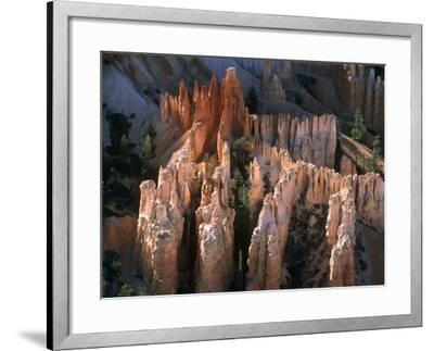 USA, Utah, Bryce Canyon-Theo Allofs-Framed Photographic Print
