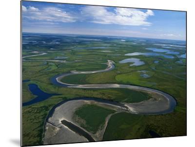 Tundra in Alaska-Danny Lehman-Mounted Photographic Print