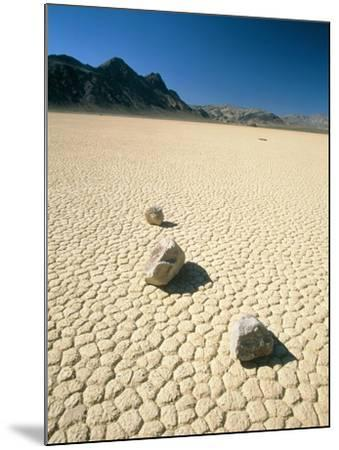 Dried clay, Death Valley, Nevada, USA-Frank Lukasseck-Mounted Photographic Print