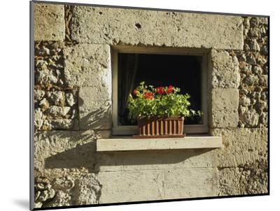 Red Geraniums on a window sill--Mounted Photographic Print