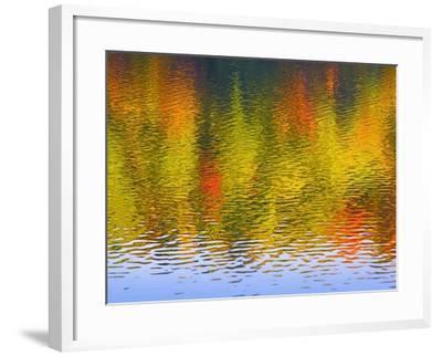 Fall Trees Reflected in Lake-Owaki-Framed Photographic Print