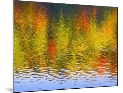 Fall Trees Reflected in Lake-Owaki-Mounted Photographic Print