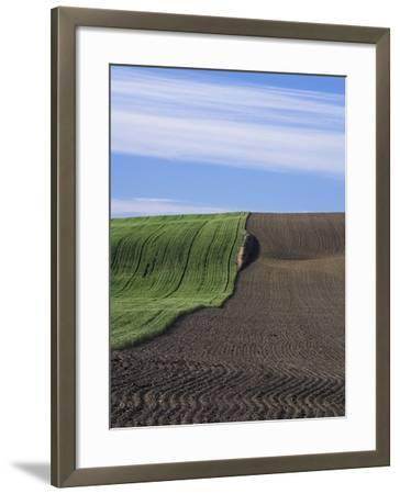 Wheat Field and Plowed Land-Frank Lukasseck-Framed Photographic Print