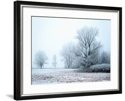 A Meadow in Winter--Framed Photographic Print