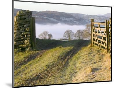 Frosty Early Morning Landscape Over Lake Windermere-Ashley Cooper-Mounted Photographic Print