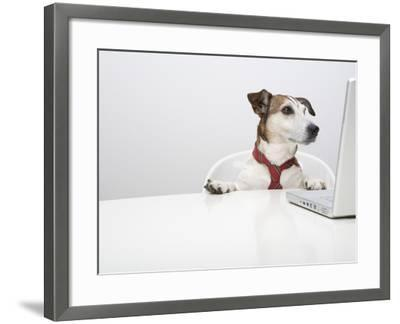 Dog in Front of Laptop at Desk-Ursula Klawitter-Framed Photographic Print