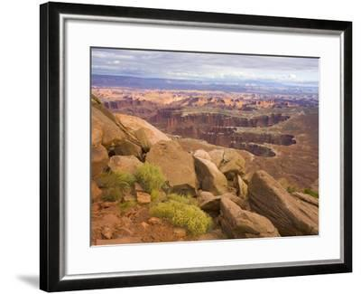 Canyon in Desert Landscape-John Eastcott & Yva Momatiuk-Framed Photographic Print