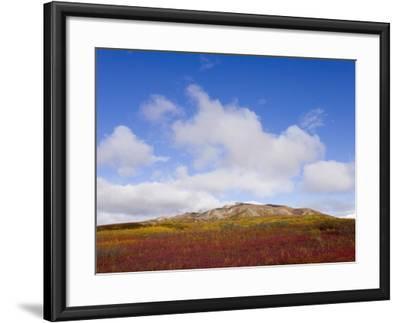 Mountain Range in Tundra Landscape-John Eastcott & Yva Momatiuk-Framed Photographic Print