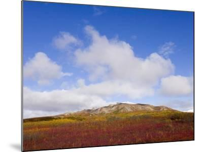 Mountain Range in Tundra Landscape-John Eastcott & Yva Momatiuk-Mounted Photographic Print