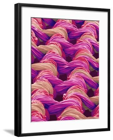 Polyester and Nylon Cloth of Woman's Bodybriefer-Micro Discovery-Framed Photographic Print