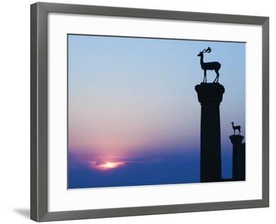 Stag Column-Walter Bibikow-Framed Photographic Print