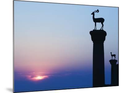Stag Column-Walter Bibikow-Mounted Photographic Print