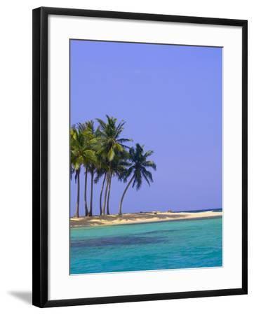 Palm Trees on Pelican Island-Blaine Harrington-Framed Photographic Print