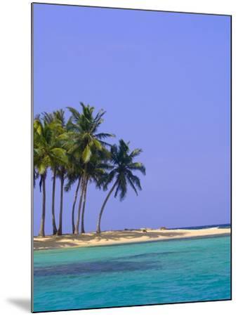 Palm Trees on Pelican Island-Blaine Harrington-Mounted Photographic Print