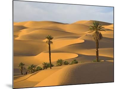 Palm Trees in Desert-Frank Lukasseck-Mounted Photographic Print