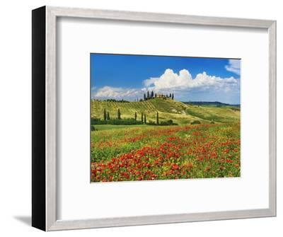 Farmhouse with Cypresses and Poppies-Frank Krahmer-Framed Photographic Print