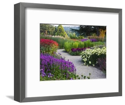 Path in Trentham Gardens-Clive Nichols-Framed Photographic Print