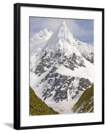 Snowy Peak Towering over King Penguins and Fur Seals-John Eastcott & Yva Momatiuk-Framed Photographic Print