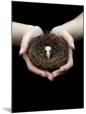 Birds Nest in Cupped Hands-Elisa Lazo De Valdez-Mounted Photographic Print