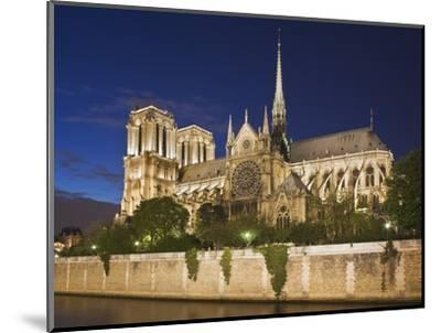 Notre Dame Cathedral at twilight-Peet Simard-Mounted Photographic Print