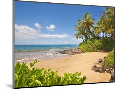Secluded sandy beach on Maui-Ron Dahlquist-Mounted Photographic Print