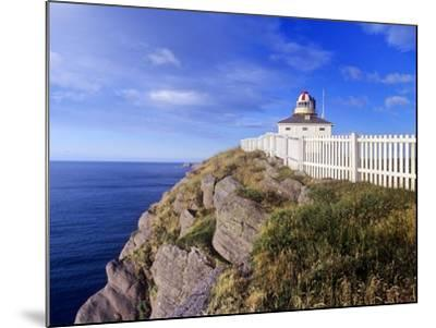 Lighthouse at Cape Spear National Historic Site, Newfoundland, Canada.-Barrett & Mackay-Mounted Photographic Print