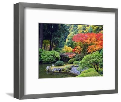 Fall Colors at Portland Japanese Gardens, Portland Oregon-Craig Tuttle-Framed Photographic Print