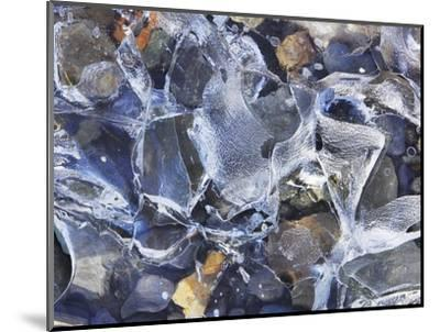 Ice detail and pebbles-Frank Krahmer-Mounted Photographic Print
