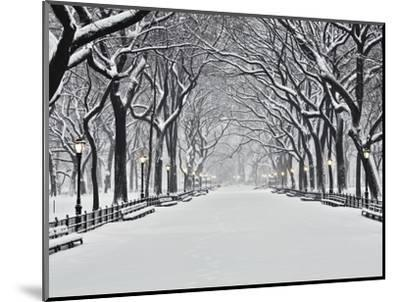 Central Park in Winter-Rudy Sulgan-Mounted Photographic Print