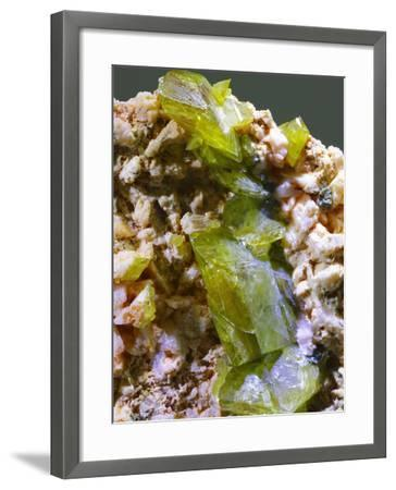 Green Titanite mineral-Walter Geiersperger-Framed Photographic Print