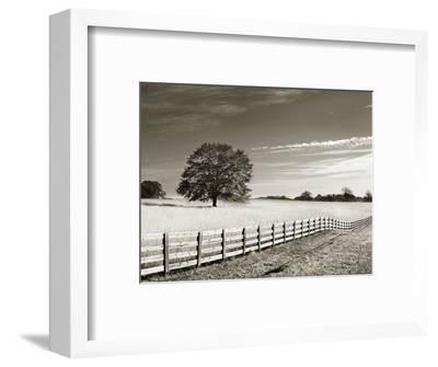 Newnan-John Kuss-Framed Photographic Print