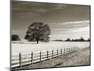 Newnan-John Kuss-Mounted Photographic Print