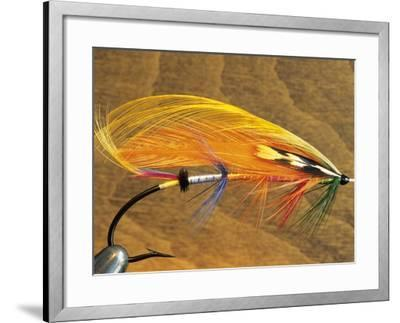 Atlantic Salmon Fly in Flytying Vise, Canada.-Keith Douglas-Framed Photographic Print