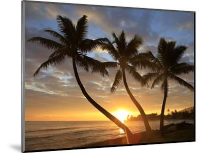 Sunrise, Windward Oahu, Hawaii-Douglas Peebles-Mounted Photographic Print