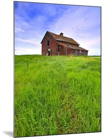 Abandoned red barn sitting on the top of a hill on a pioneer homestead in rural Alberta Canada-Robert McGouey-Mounted Photographic Print