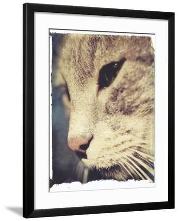 Wally No.2-Jennifer Kennard-Framed Photographic Print