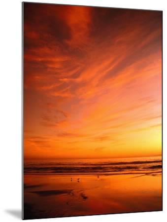 Southern California Sunset at Beach-Mick Roessler-Mounted Photographic Print